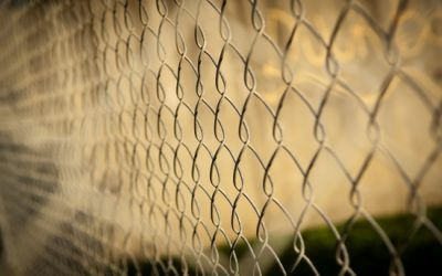 Palisade vs Mesh Fencing – Which is the Best Option For Your Property
