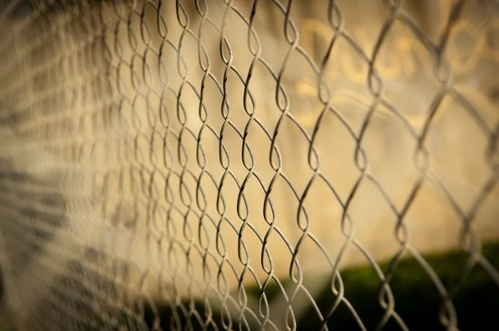 Palisade vs Mesh Fencing – Which is the Best Option For Your Property?